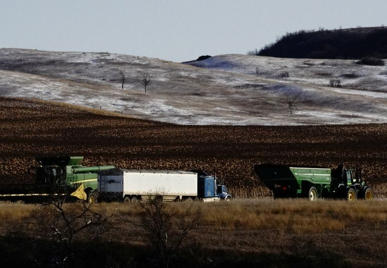 North American farmers profit as consumers pressure food business to go green