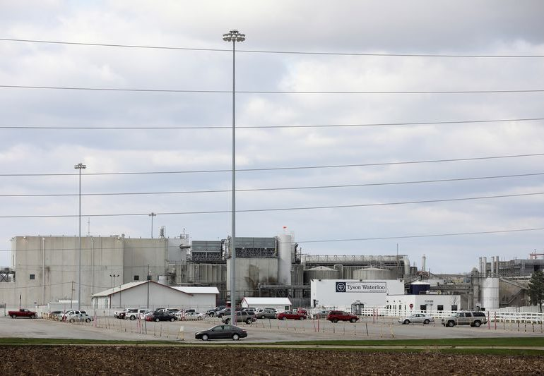 Tyson Foods resumes slaughtering hogs at idled Iowa pork plant