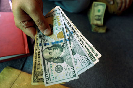 Dollar Up, Steadies as Investors Await Georgia Election Results