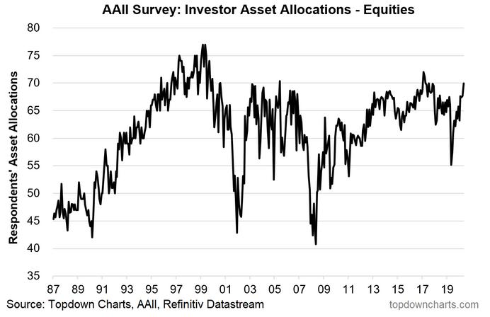 Investor Asset Allocation - Equities