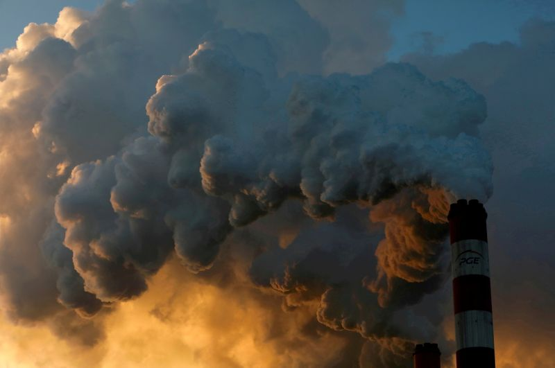 CEOs and investors push world leaders for stronger climate action